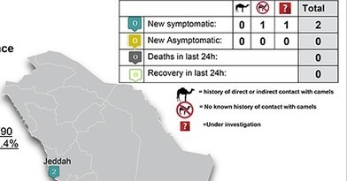 Avian Flu Diary: Saudi MOH Reports 2 MERS-CoV Cases In Jeddah | MERS-CoV | Scoop.it