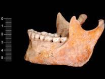 Cavemen bones yield oldest modern human DNA - CBS News | Amazing Science | Scoop.it