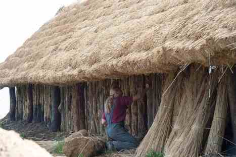 Neolithic settlement reconstructed | Archaeology News | Scoop.it