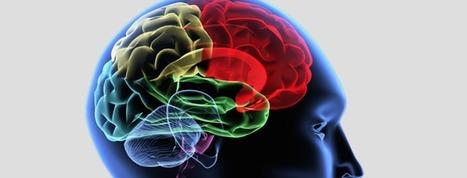 Il Training Cognitivo | Formazione e Coaching | Scoop.it