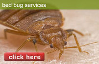 Toronto Pest Control | Bed Bugs | Residential Extermination Vaughan | Pest Control | Scoop.it