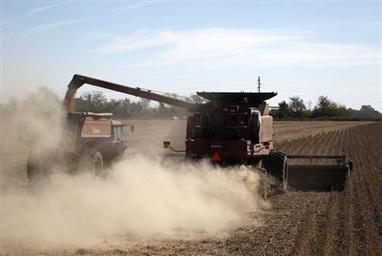 """World Environment News - Analysis - Lack of crop rotation slowly turns Argentine Pampas into """"sand"""" - Planet Ark 