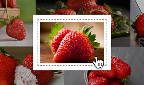 Banque d'Image Libre de Droit, Photos, Vecteurs et Vidéo - Shutterstock | Formation multimedia | Scoop.it