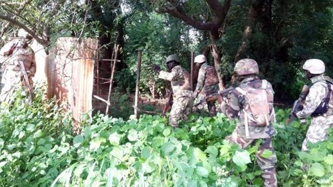 ​Nigerian ​Army rescues 20 more abducted persons | Kidnapping | Scoop.it