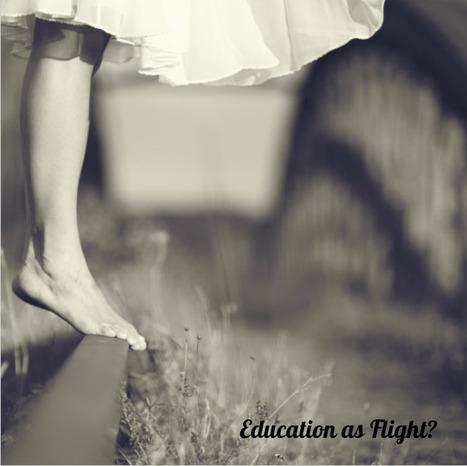 CristinaSkyBox: The Flight of Leadership in Education | E-Learning Methodology | Scoop.it