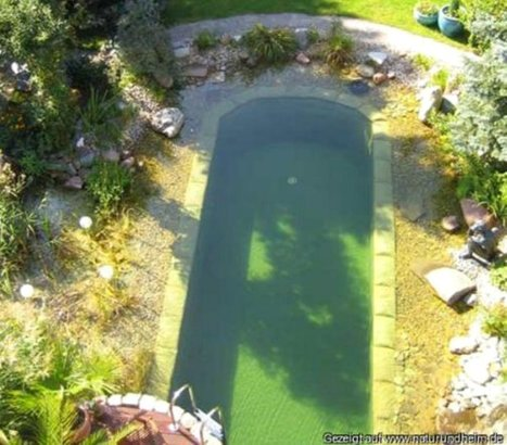 Natural Pools or Swimming Ponds | Gardening is more than Digging the Dirt | Scoop.it