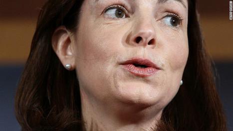 Daughter of Newtown victim confronts senator | Gov & Law - Jillian Krier | Scoop.it