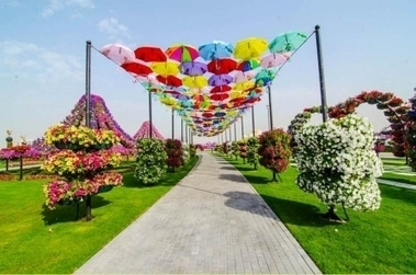 Dubai Miracle Garden - Sara Hussein - Archh | Architecture & Interior Design network | Scoop.it