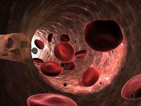 Turning red blood cells into cargo ships | leapmind | Scoop.it