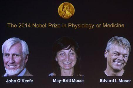 Le Nobel de médecine récompense la découverte d'un « GPS cérébral » | Nutrition & Diététique | Scoop.it