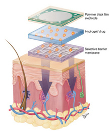 Introduction to Transdermal Drug Delivery (TDD) system and nanotechnology | NanoBioPharmaceuticals | Scoop.it