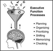 Strategies for Success | Executive Functioning - NCLD | Wiki_Universe | Scoop.it
