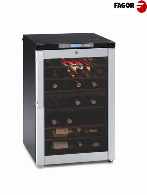 Tủ Bảo Quản Rượu Fagor FSV-95 | Sản phẩm phụ kiện bếp xinh, Phụ kiện tủ bếp, Phụ kiện bếp, Phukienbepxinh.com | THIẾT BỊ NHÀ BẾP - THIẾT BỊ NHÁ BẾP FAGOR | Scoop.it