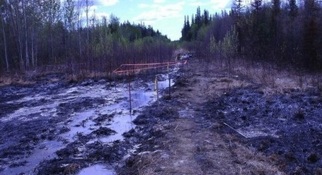 'Every Plant And Tree Died': Huge Alberta Pipeline Spill Raises Safety Questions As Keystone Decision Looms | Sustain Our Earth | Scoop.it