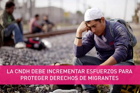 La CNDH debe incrementar esfuerzos para proteger derechos de ...   Migrantes de paso por México   Scoop.it