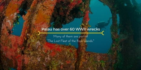 Explore the Lost Fleet of the Rock Islands as a Wreck Diver | Bookyourdive | Scoop.it