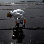 Thaïlande : 50 000 litres de pétrole souillent une île touristique - Le Monde | Action Durable | Scoop.it