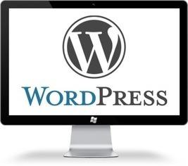 Hire Wordpress Designer And Developer For Website Development, California USA | Creative & Professional Logo Design | Scoop.it
