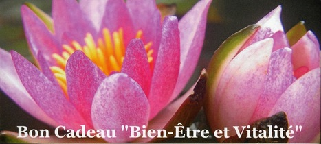 Françoise Couteron : SHIATSU, Réflexologie Plantaire, Do-In et Yoga à Nantes Les Sorinières: Bons Cadeaux | Réflexologie Plantaire et Palmaire | Scoop.it