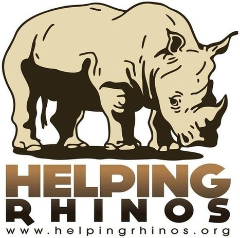 UK charity, inspired by Thandi tragedy, donates R1.2m to rhino conservation | What's Happening to Africa's Rhino? | Scoop.it