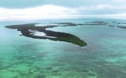El calentamiento global, la sobrepesca, la acidificación y la contaminación ponen en la 'cuerda floja' a los arrecifes | Las personas y el medio ambiente | Scoop.it
