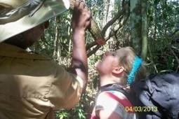 Belize Trails Wilderness Survival Course | ApocalypseSurvival | Scoop.it