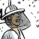 Agricultura: La prohibición de pesticidas pretende acabar con la masacre de abejas | @LaurentGranada | Scoop.it