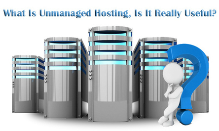 What Is Unmanaged Hosting, Is It Really Useful? | Alpha VBox Blog | Virtual Private Server & Dedicated Server | Scoop.it
