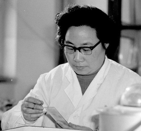 Answering an Appeal by Mao Led Tu Youyou, a Chinese Scientist, to a Nobel Prize - The New York Times | Ethnobotany: plants and people | Scoop.it
