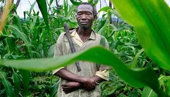Katanga : de la mine à la minoterie, les enjeux du bukari | wisdom | Scoop.it