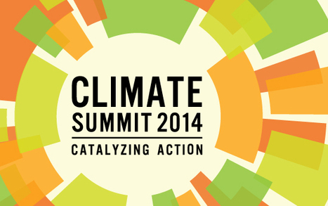 UN Climate Summit – more hot air or a breath of hope? — EIA International | The Wild Planet | Scoop.it