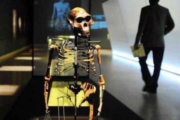 Les musées de Québec moins fréquentés, une «problématique réelle» | Stéphanie Martin | Expositions | Politique culturelle, politiques des publics, pratiques culturelles | Scoop.it