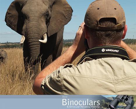 Best Binoculars for Safari Holidays | World of Optics | Scoop.it