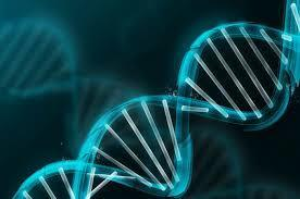 JSB Market Research: DNA SEQUENCING | Market research report | Scoop.it