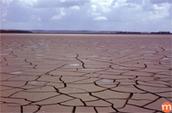 La dégradation des sols dans le monde | earth sciences | Scoop.it