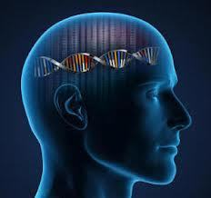 Most Reported Genetic Associations with Intelligence Are Probably False Positives | Keeping taps on the Alzheimer's Desease | Scoop.it