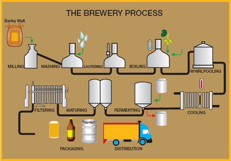 (EN) - Beer Brewing Glossary | Brew-Monkey.Com | things i found | Scoop.it