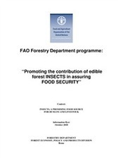 Promoting the contribution of edible forest INSECTS in assuring   Entomophagy: Edible Insects and the Future of Food   Scoop.it