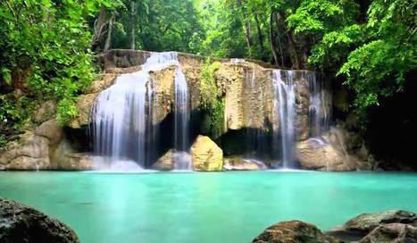 Mozart? Per rilassarsi meglio i suoni della natura | Your TopNews  - Fresh News Stream | Scoop.it