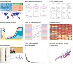Researchers create new visualization tools to study global health | e-Xploration | Scoop.it
