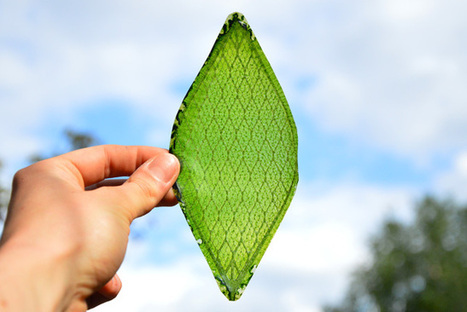 Silk leaf maker says material could aid space journeys (w/ Video) | Cool Future Technologies | Scoop.it