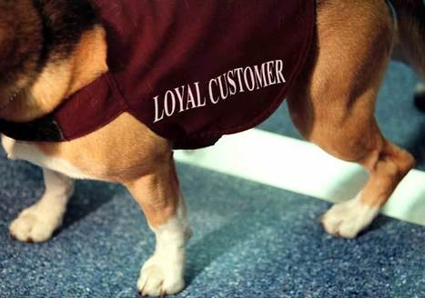 Breeding loyalty can create dividends | CRM-fidélisation-clients | Scoop.it
