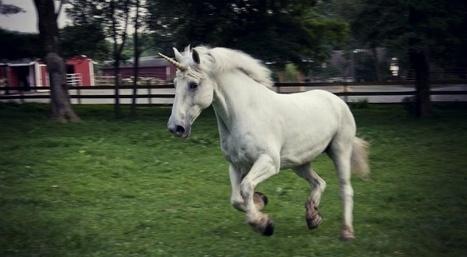 Yeti, licorne... les animaux fantastiques existent-ils vraiment? | Slate | SWicart | Scoop.it