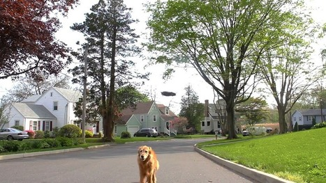Just a Drone Taking a Dog for a Walk, NBD | Digital Video Editing | Scoop.it