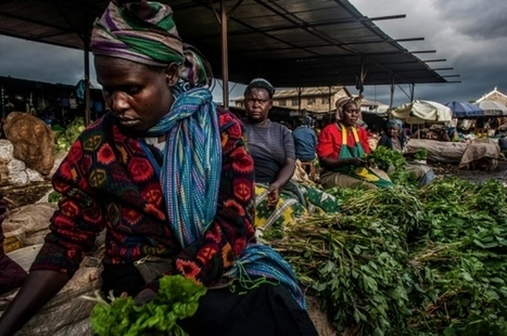 The rise of Africa's super vegetables - Nature (2015) | Ag Biotech News | Scoop.it