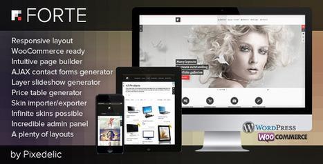 Forte multipurpose WP theme (eCommerce ready) v2.4.0 | Download Free Full Scripts | jhskjhkfha | Scoop.it