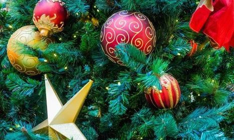 The Hazards of Christmas Decorations   Workplace safety and health Australia   Scoop.it