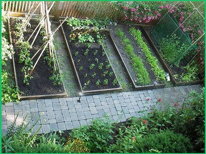 25 HEIRLOOM VEGETABLE GARDEN SEEDS NON-GMO/HYBRID ORGANIC SURVIVAL SEED BANK | Gardens and Gardening | Scoop.it