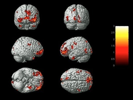 Identifying emotions based on brain activity and machine-learning techniques | KurzweilAI | Social Neuroscience Advances | Scoop.it