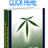 How to Quit Smoking Weed  Real Time Alternatives